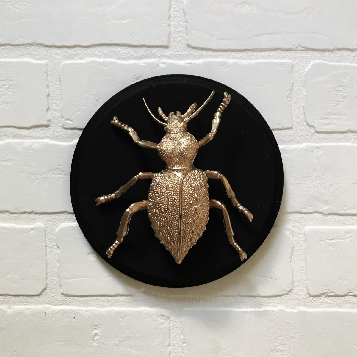 Gilded Faux Bug on Plaque